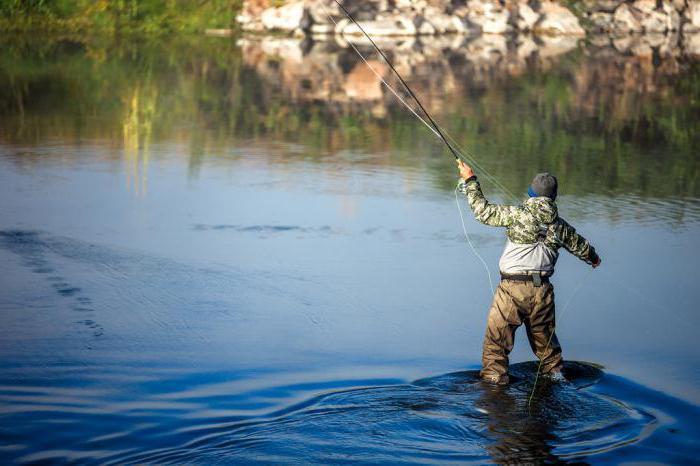 Uhvatiti neko mjesto za upoznavanje riba
