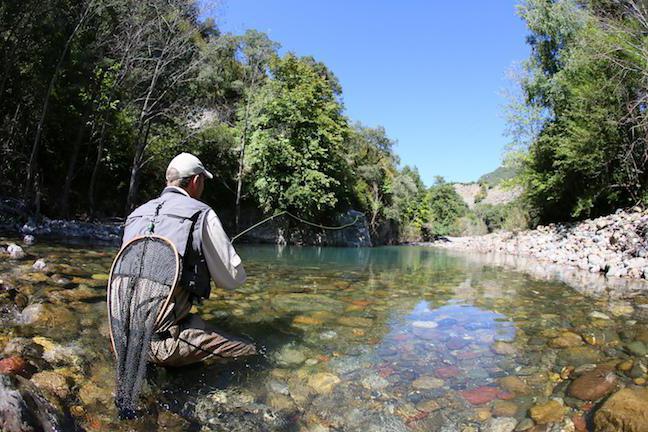 Rečna postrv, kjer je najdena