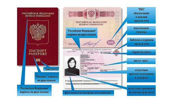 numero di serie e passaporto dove cercare