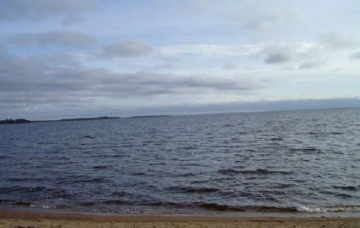 ilmen lago dove