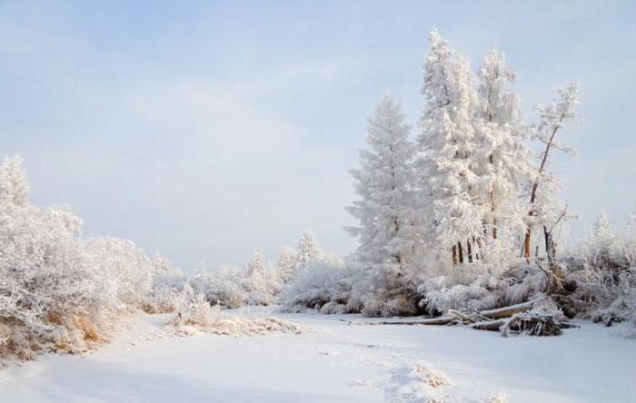 hladni pol sjeverne polutke