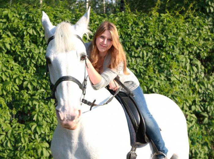 equitazione club Izmailovo in alto a cavallo