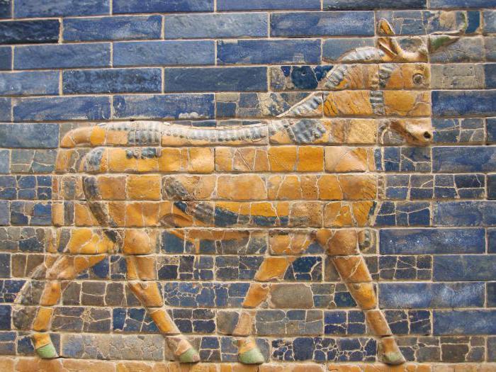 mezopotamske nižine