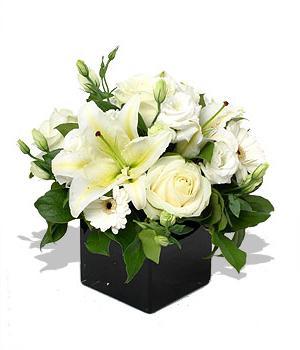 cvijet ljiljana