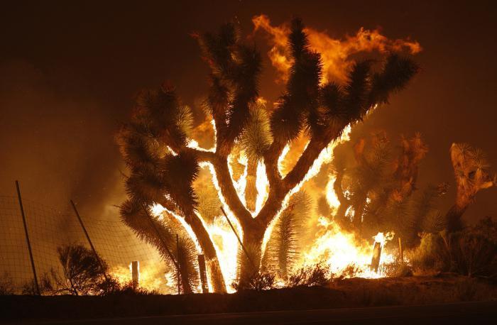 sní o požáru