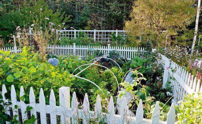 perché sognare un giardino