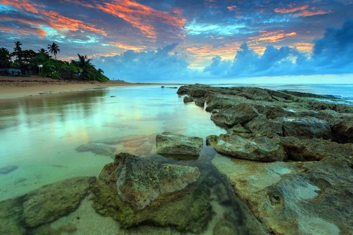 divje plaže