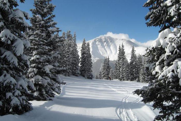descrizione della natura invernale