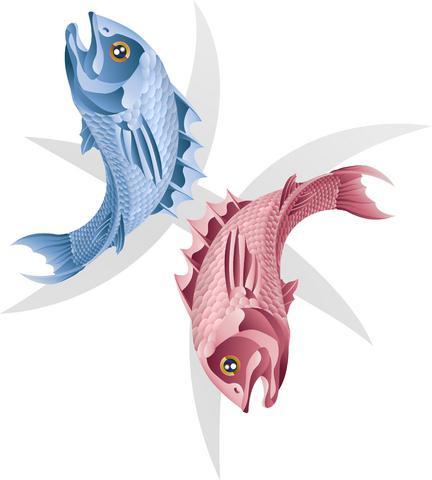 riba ženska funkcija