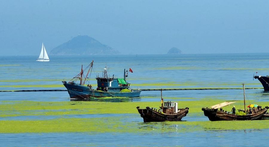 Mare vicino all'isola di Qingdao