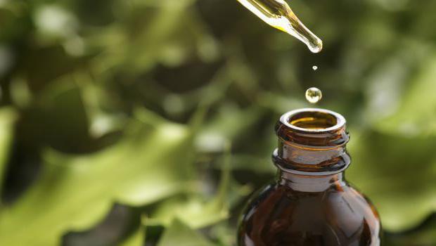 Olej ylang ma korzystne właściwości dla włosów