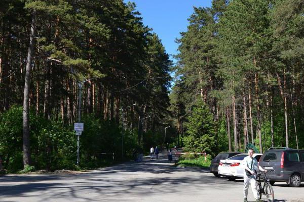 Zaeltsovsky Park