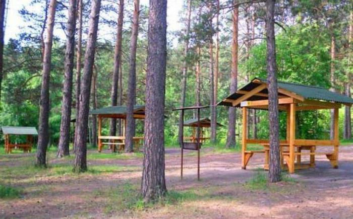 Zaeltsovsky park vrtna uta