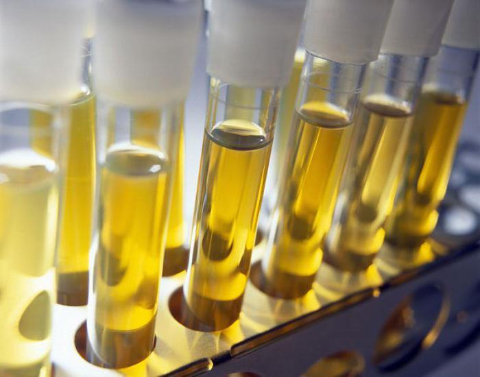 zbiranje urina za zimnitsky algoritem za otroke