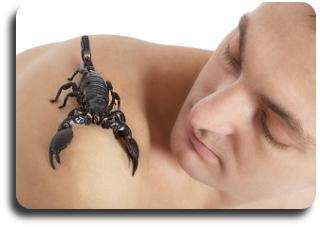 Caratteristica maschio dello scorpione dello zodiaco del segno